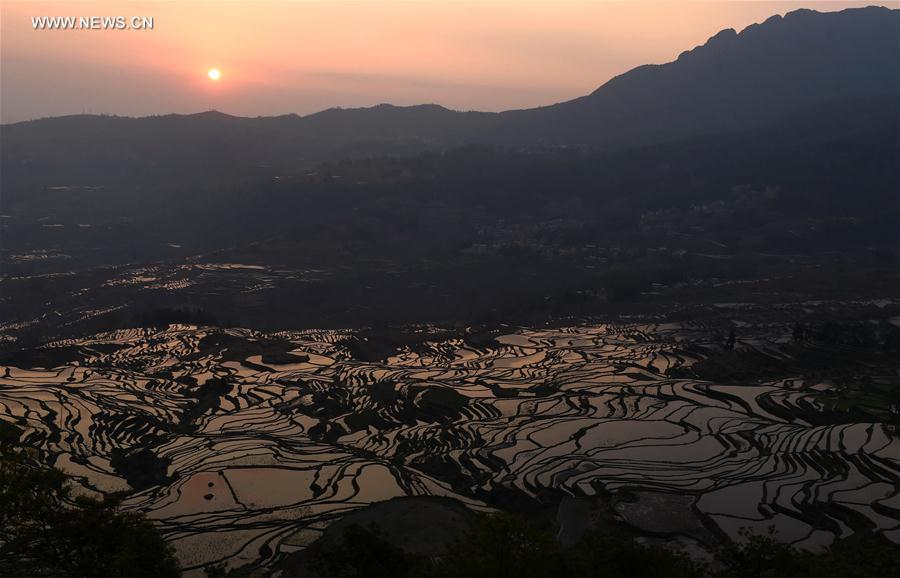 CHINA-YUNNAN-HANI TERRACE-SCENERY (CN)
