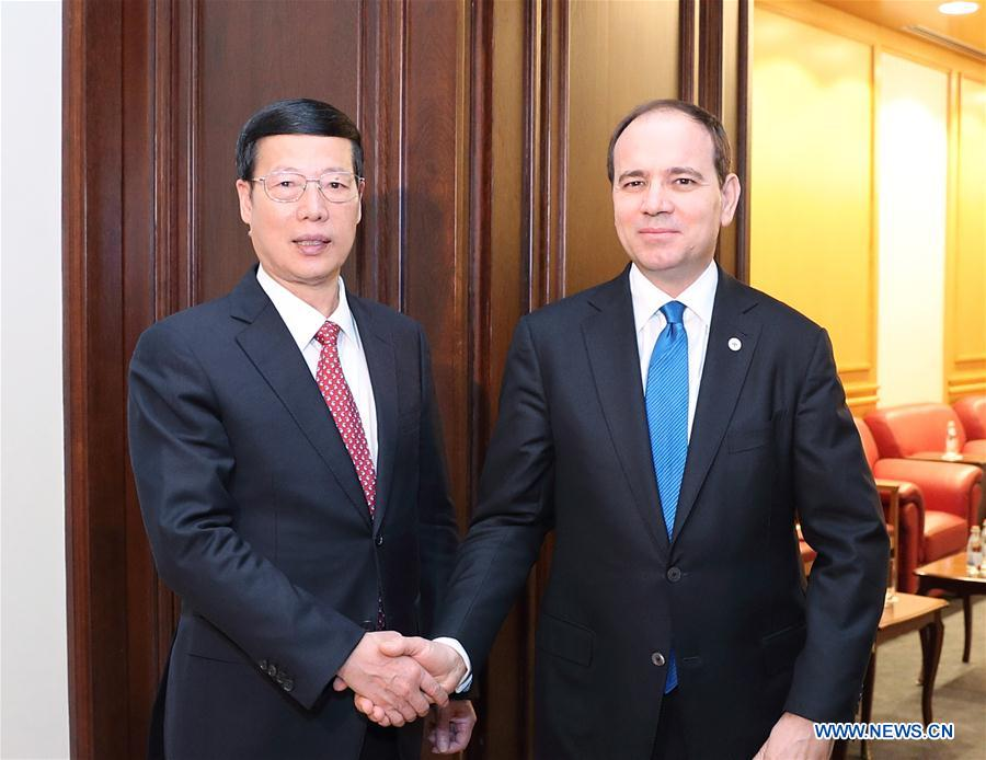 China, Albania agree to expand cooperation under Belt and Road, 16+1 framework
