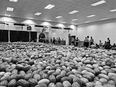 贫困毕业生家西瓜滞销学校买下33吨