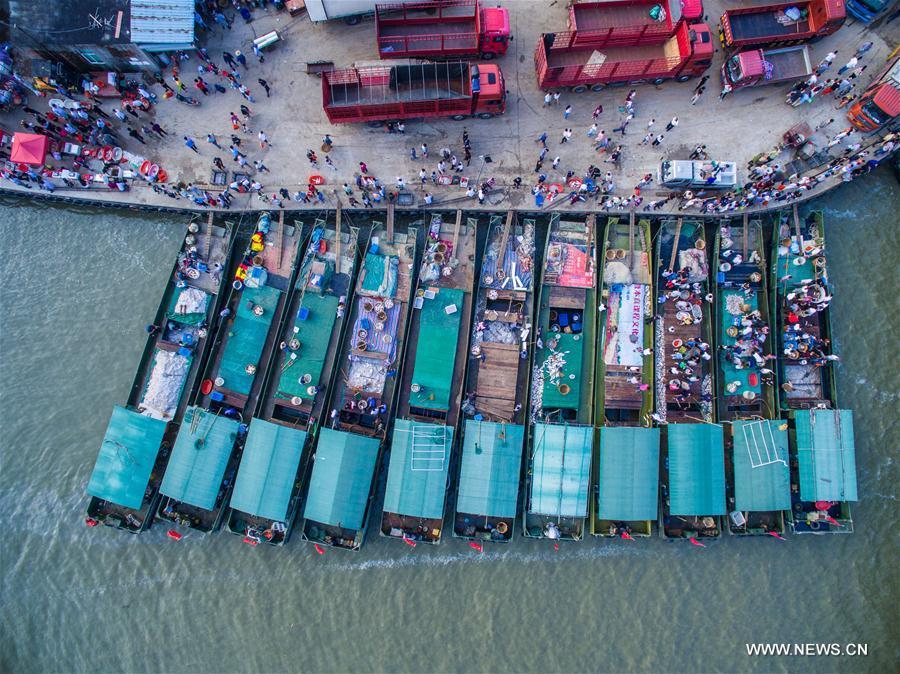 Fishing season of Taihu lake starts in China's Zhejiang