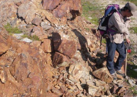 加拿大发现生命起源最古老证明 拥有39.5亿年历史