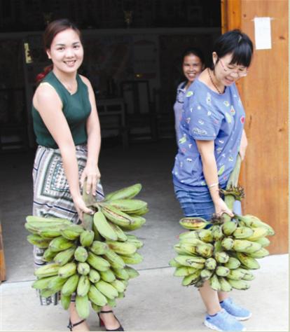 原生态绿色食品助农增收入