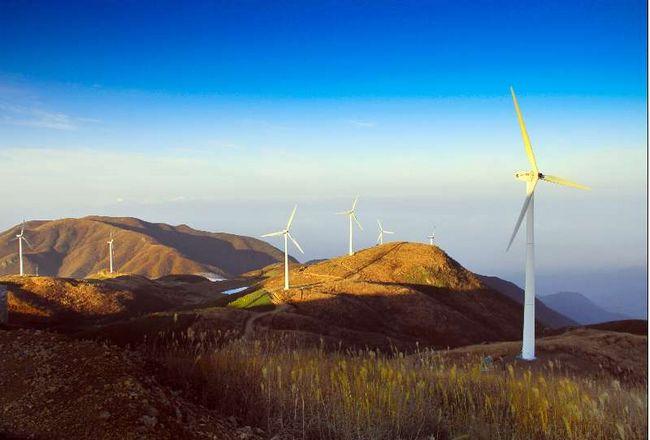 农业银行帮扶的绿色生态项目