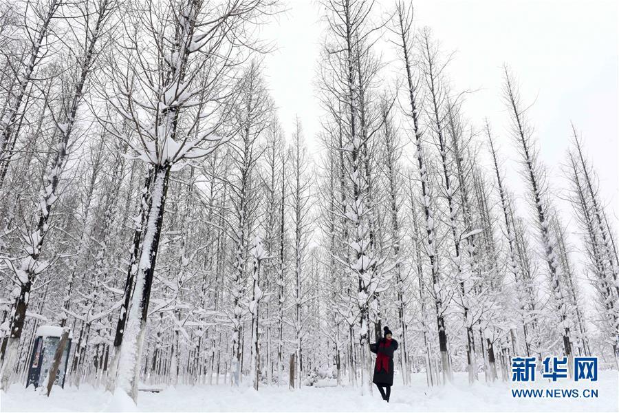 #(社会)(5)雪落人间