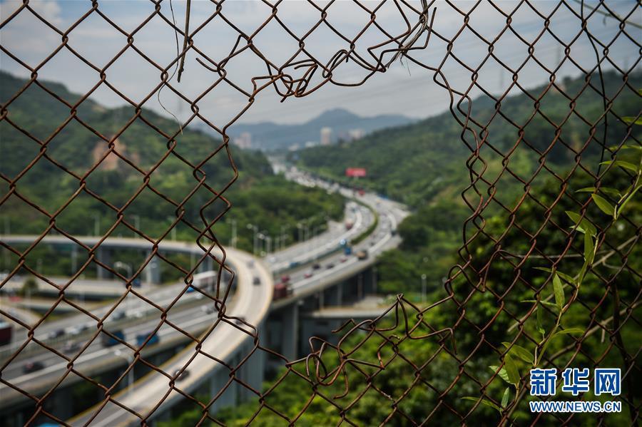(经济)(1)深圳撤销经济特区管理线 湾区经济加速推进一体化
