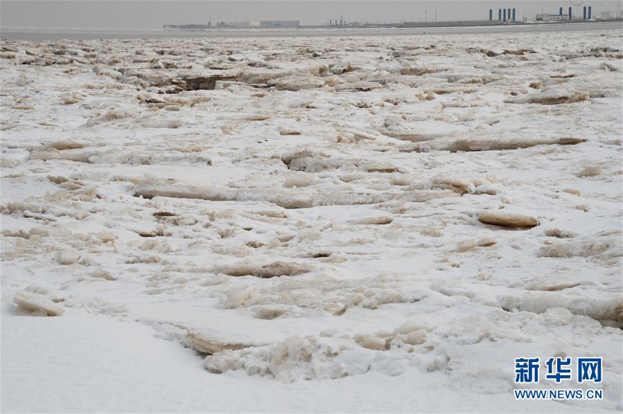 (環境)(1)海冰來襲