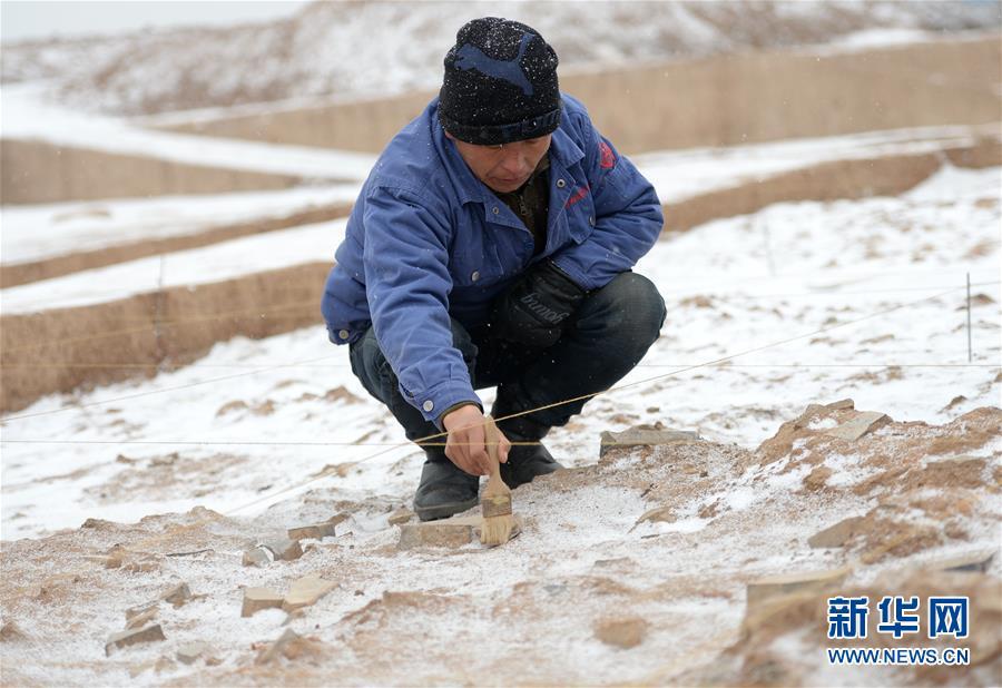 (文化)(8)陕西首次发现秦代大型国家府库遗址