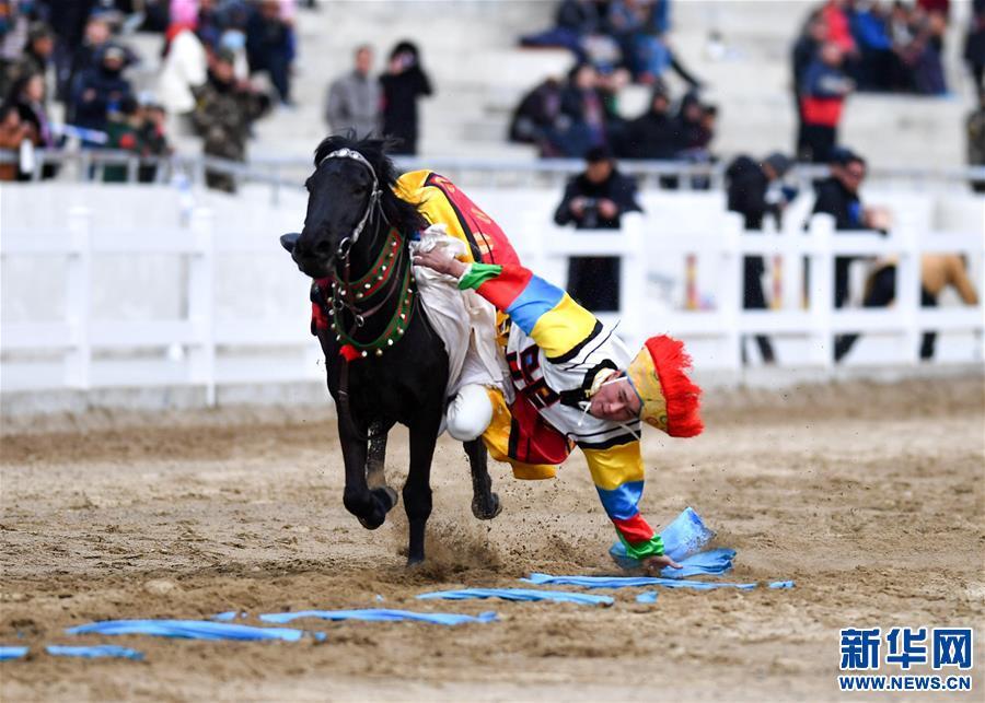 (体育)(3)民族体育——传统马术表演庆藏历新年
