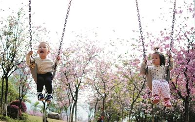 柳州:花下展现最美笑容