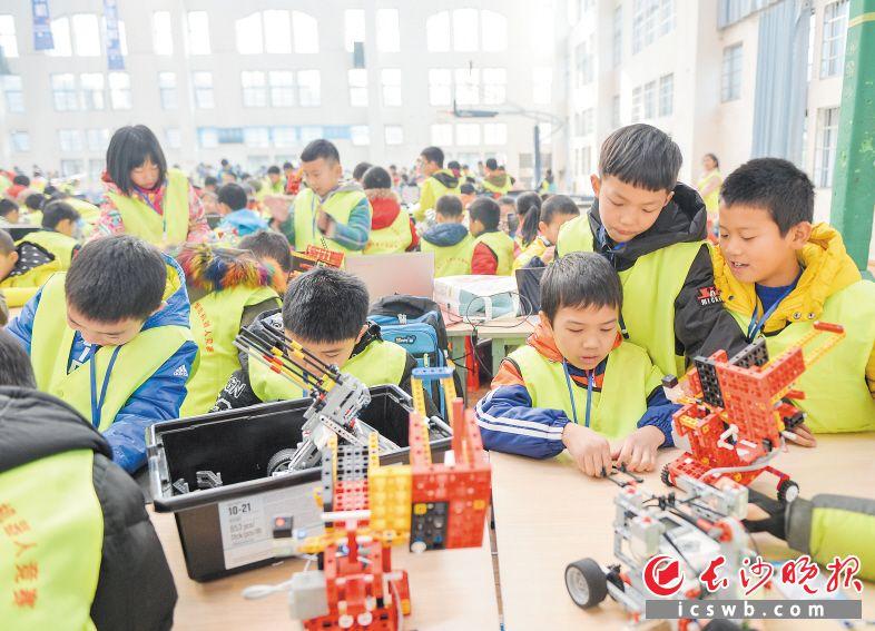 图为在长沙举行的2018国际奥林匹克青少年智能机器人竞赛湖南区选拔赛。长沙晚报记者 邹麟 摄
