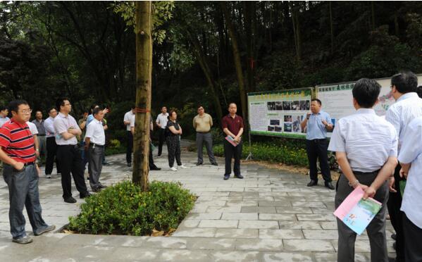 區直林場生產經營現場會在高峰設參觀點