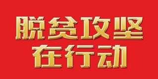 【脱贫攻坚在行动】麻江蓝莓串起产业链条