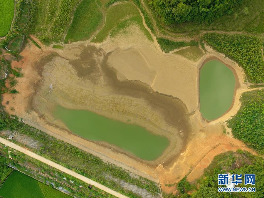 (图文互动)(1)湖南2.5万人因旱遭遇饮水难 201万亩农作物受旱