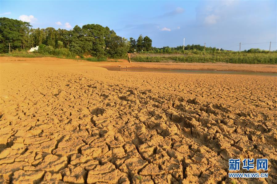 (圖文互動)(2)湖南2.5萬人因旱遭遇飲水難 201萬畝農作物受旱