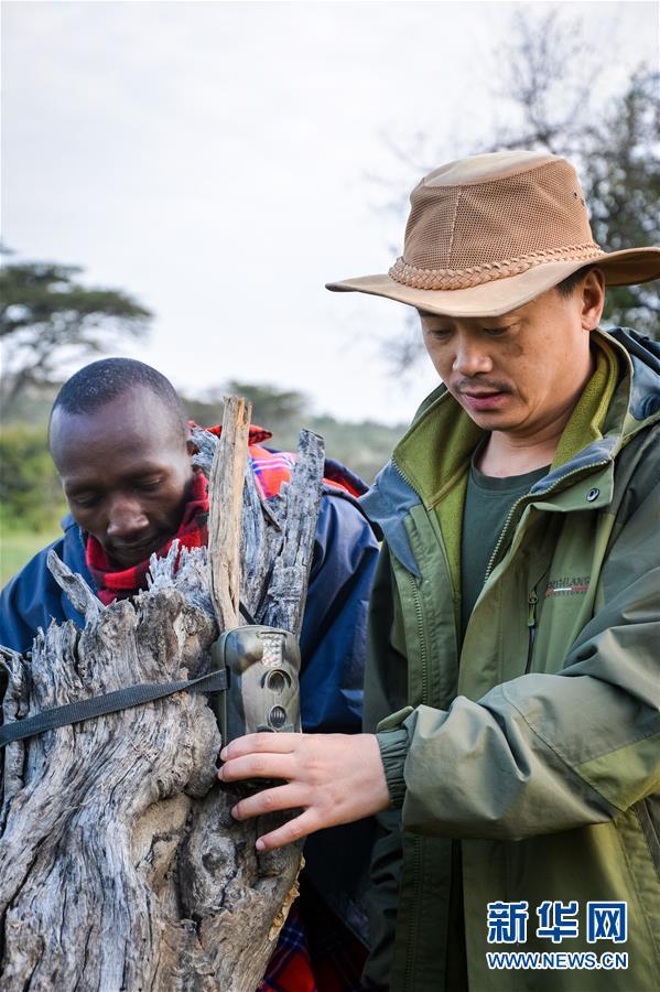 (国际・中非合作论坛・图文互动)(11)与狮同行――东非草原上的中国追梦人