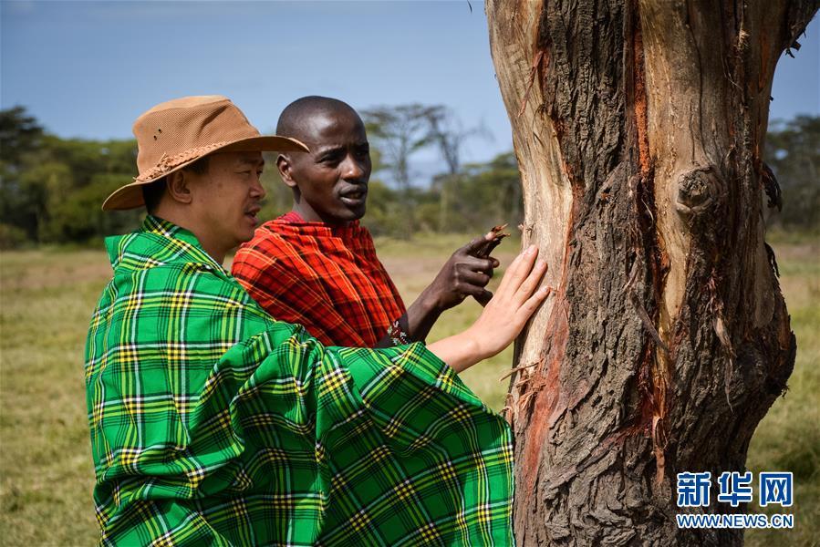 (国际・中非合作论坛・图文互动)(9)与狮同行――东非草原上的中国追梦人