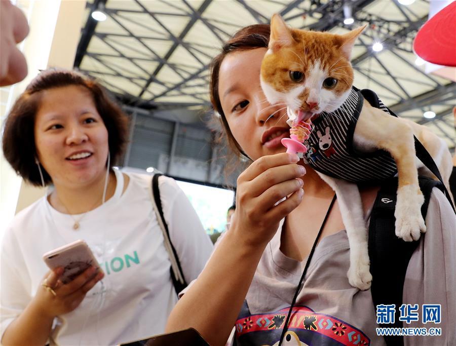 (社会)(1)亚洲宠物展在沪举行