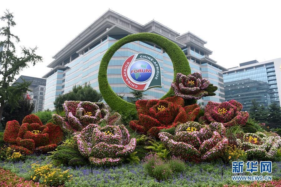 (中非合作论坛)(2)北京街头靓丽花坛迎盛会