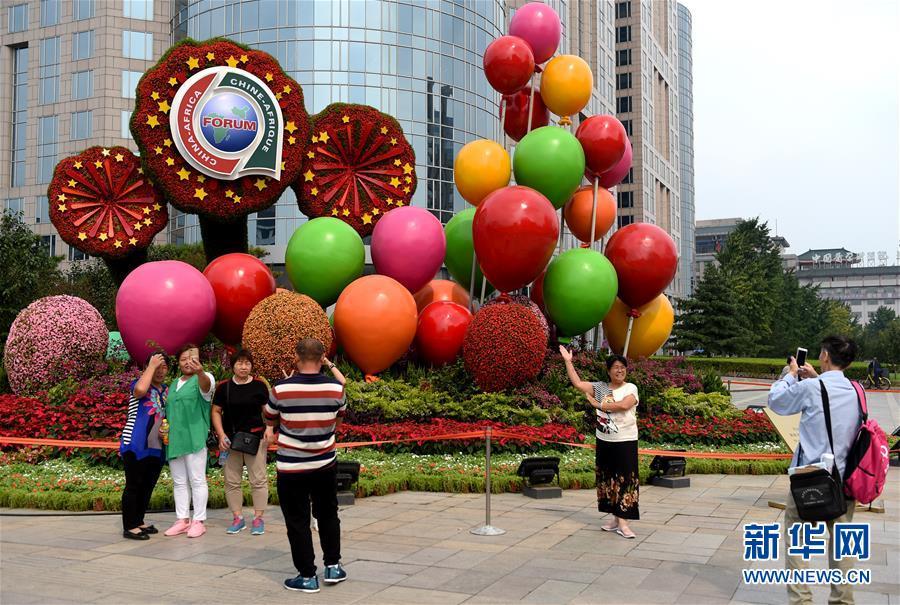 (中非合作论坛)(5)北京街头靓丽花坛迎盛会