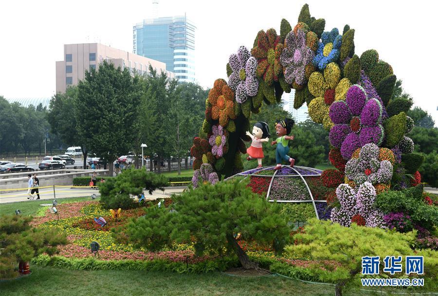 (中非合作论坛)(6)北京街头靓丽花坛迎盛会