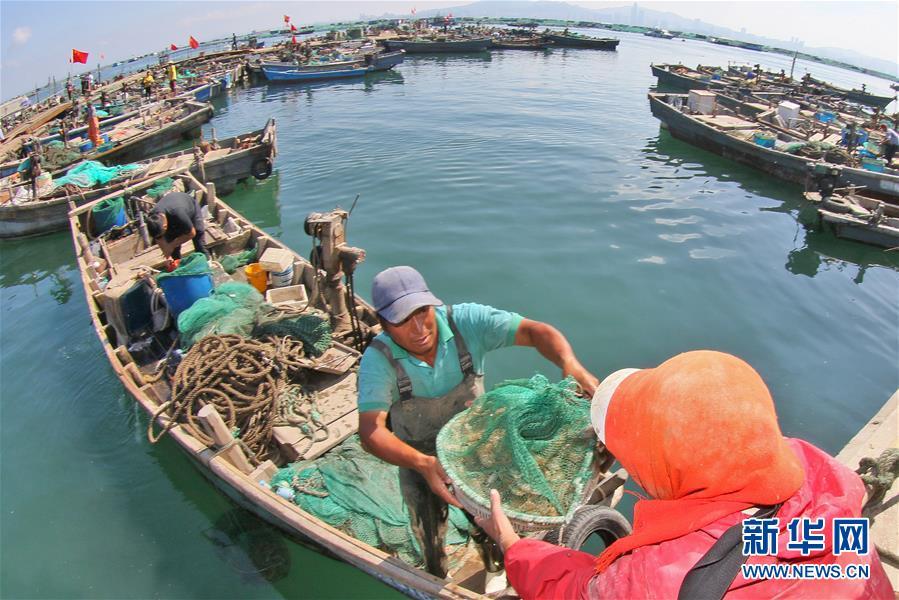 #(经济)(5)黄渤海伏季休渔期结束
