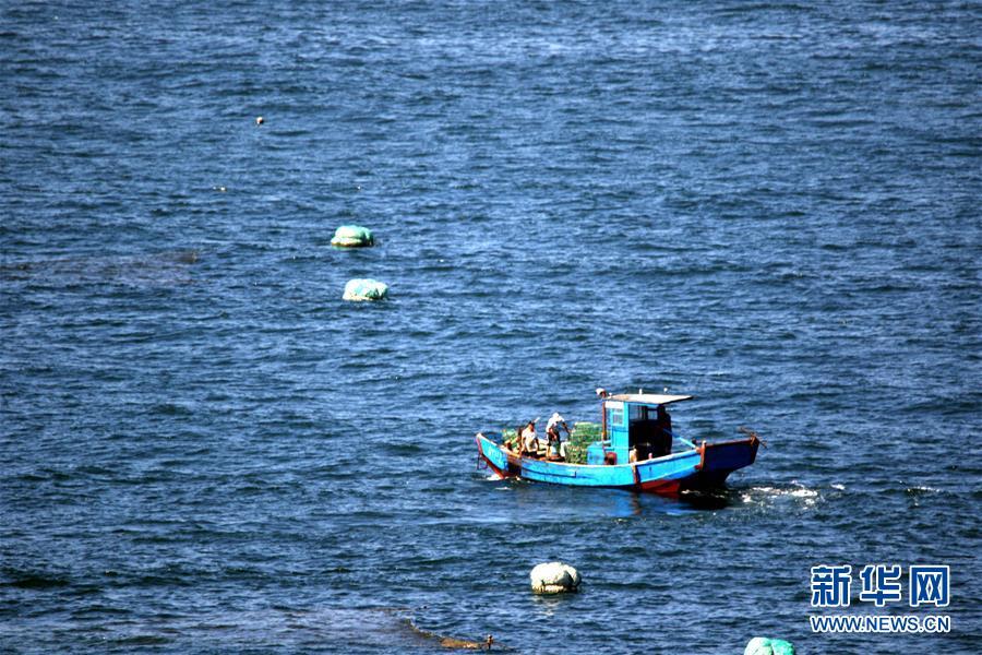 #(经济)(1)黄渤海伏季休渔期结束