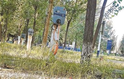 北京蟹岛附近现充电桩坟场
