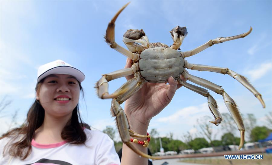 #CHINA-SUZHOU-FOOD CULTURE-CRAB-FESTIVAL (CN)
