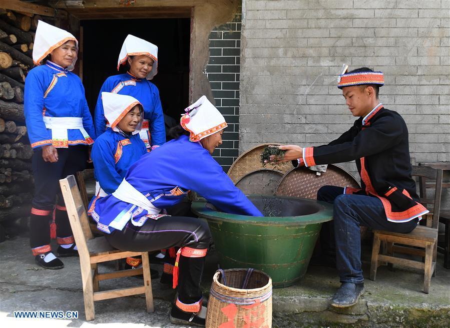 China's Guangxi greets tea harvest season