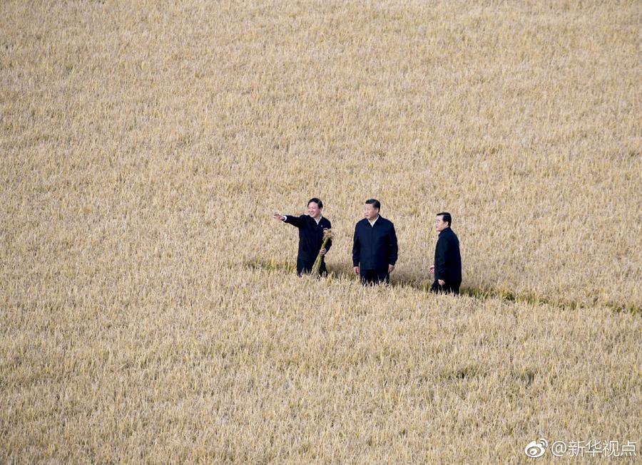 博天堂线上娱乐场习近平在黑龙江考察,首站来到建三江