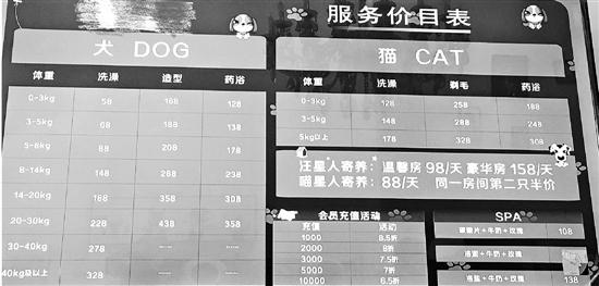 《2018年中国宠物行业白皮书》近日发布,中国城镇养宠人数达7355万