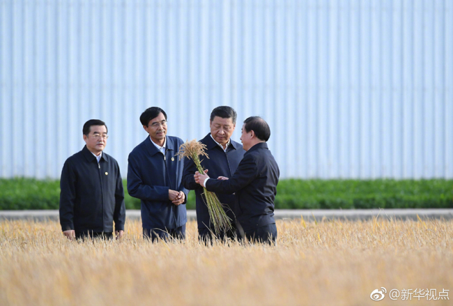 Chinese President Xi Jinping conducts an inspection tour in northeast China's Heilongjiang Province on Tuesday. [Photo: Xinhua]
