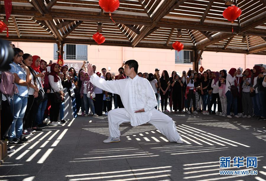 (国际)(4)孔子学院文化日活动走进埃及博物馆