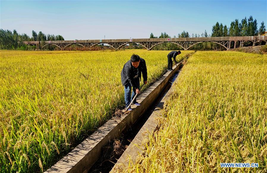 CHINA-HEBEI-LULONG-IRRIGATION SYSTEM (CN)