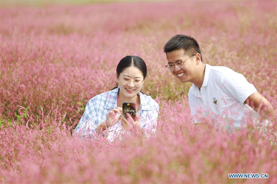 #CHINA-JIANGSU-HUAI'AN-FLOWER-TOURISM (CN)