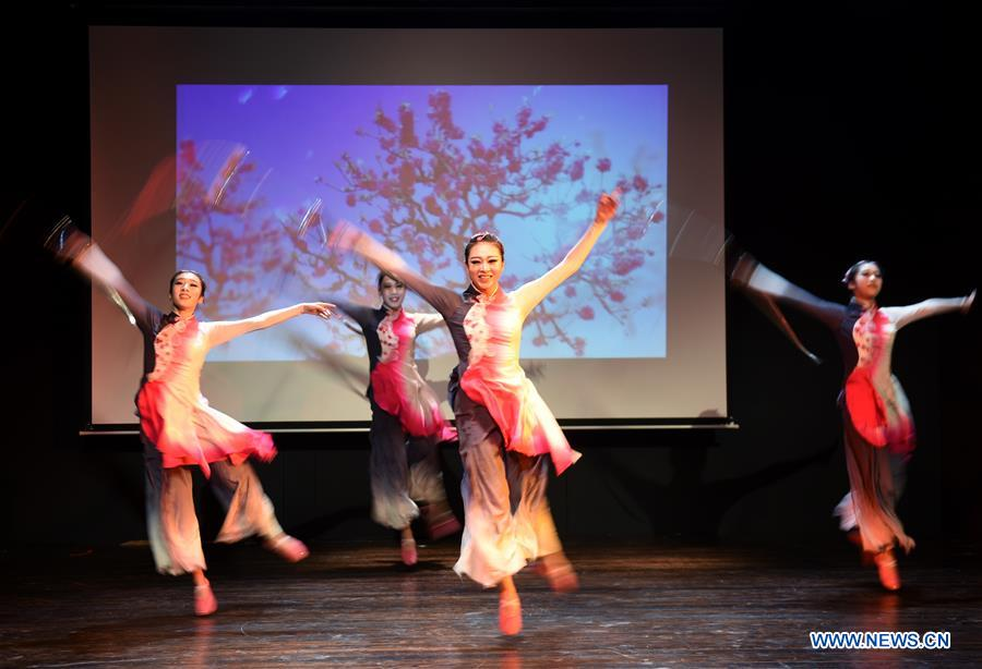 Chinese Kung Fu show enchants audience at Istanbul university