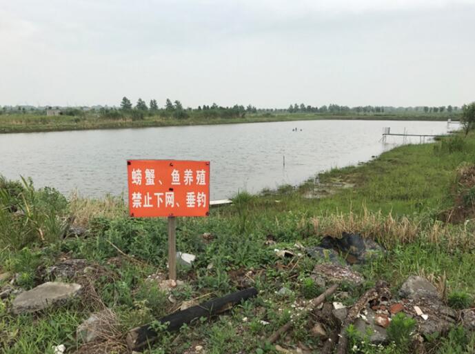 长江豚类省级自然保护区违法开发江滩湿地破坏严重
