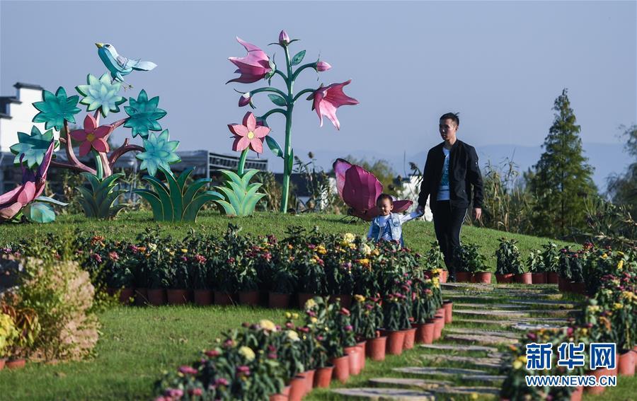 (社会)(1)建设美丽乡村 打造七彩田园