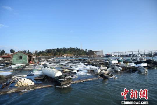 [Photo: Chinanews.com]