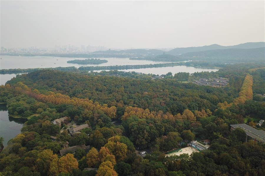 CHINA-ZHEJIANG-HANGZHOU-WEST LAKE-WINTER SCENERY (CN)