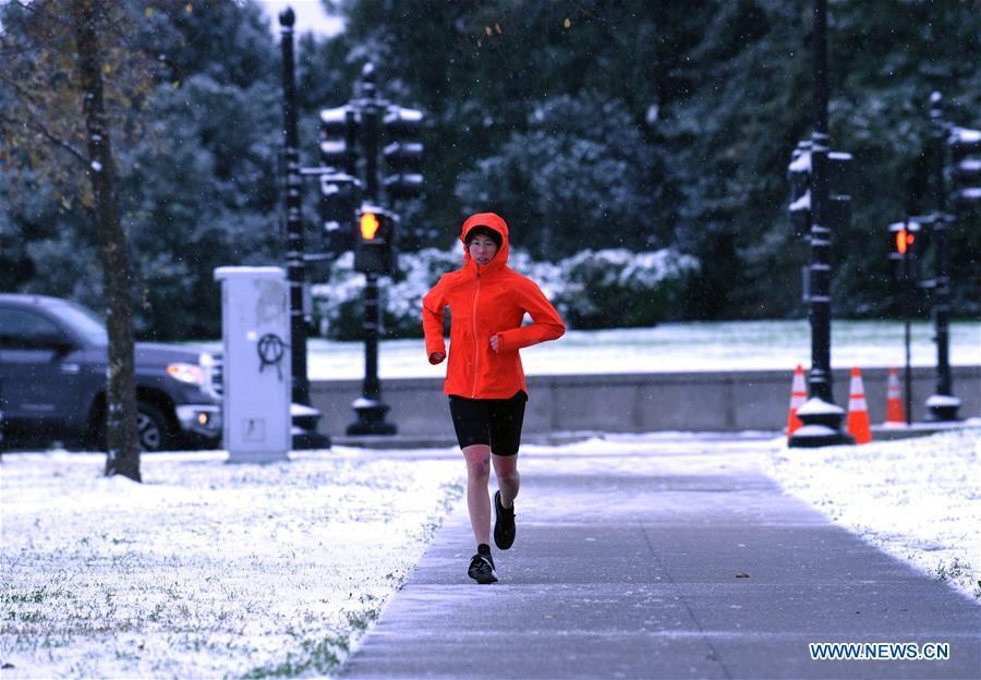 Snowfall hits U.S. capital