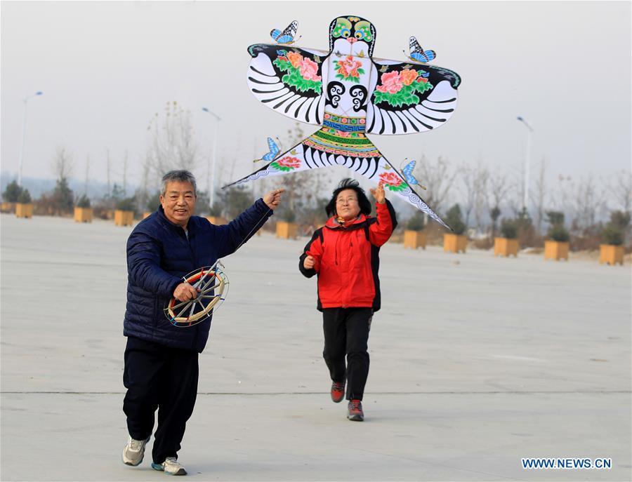 Pic story: craftsman devotes 20 years in kites making