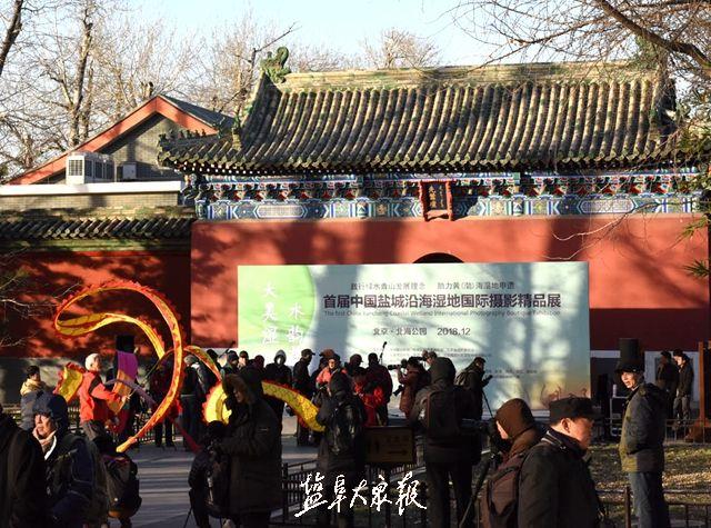 首届中国盐城沿海湿地国际摄影精品展,在京开幕啦!