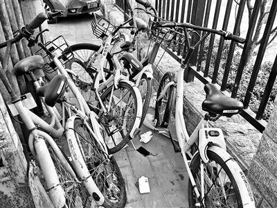 男子骑天桥坠亡 共享单车频现刹车问题归谁管