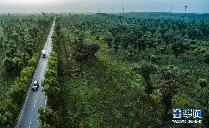 绿色的奇迹——改革开放40年变迁系列述评生态篇