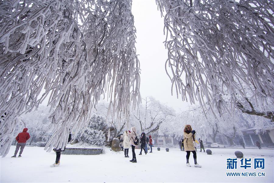 #(社會)(2)冰雪廬山  銀裝素裹