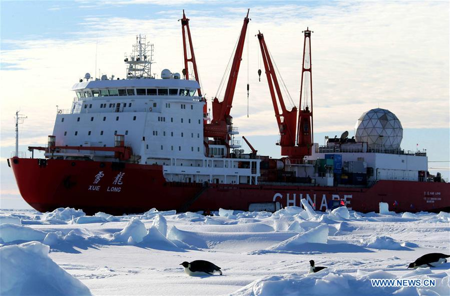 bd6497c6766 Penguins seen near China's research icebreaker Xuelong in Antarctica (6) -  People's Daily Online