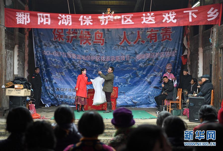 "(XHDW・图文互动)(1)鄱阳湖畔候鸟保护""唱""入人心"