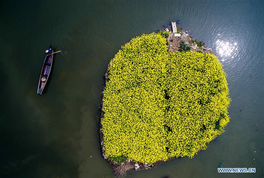 China's Zhejiang implements project to overhaul living environment in villages