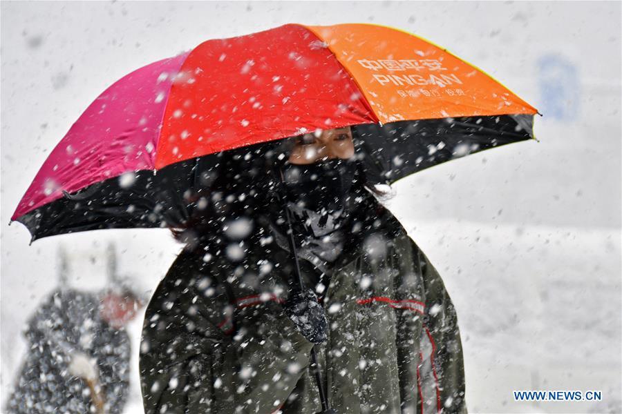 Snowfall hits Yantai, E China's Shandong